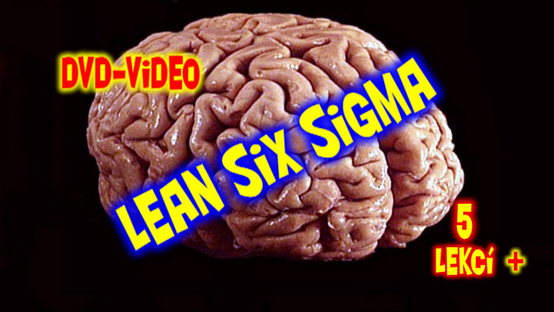 Lean Sex Sigma 5 lessons
